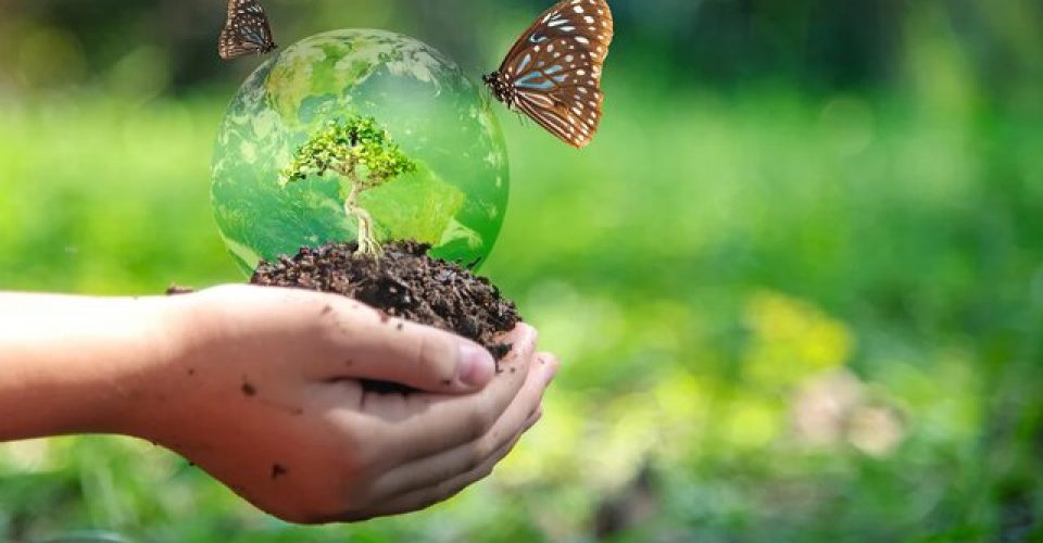 تنوع زیستی، ابزاری در مقابله با بیماریهای همهگیر